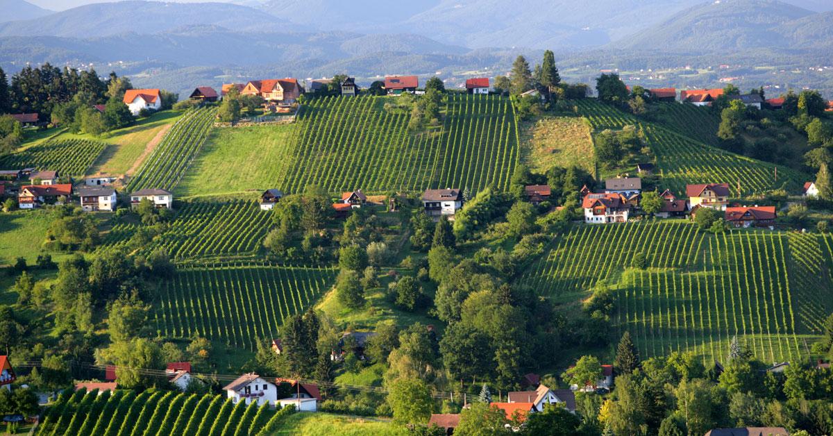 Die Schilcher Weinstraße ist eine der bezaubernsten Gegenden in der Steiermark. Ein Besuch lohnt sich immer!