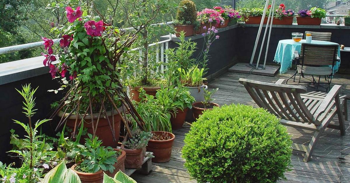Mit einem Dachgarten genießen Sie Natur in luftiger Höhe.